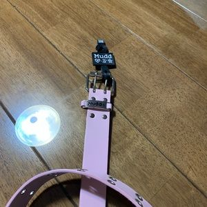 NWT Mudd Pink Leather Grommet Belt Sz S